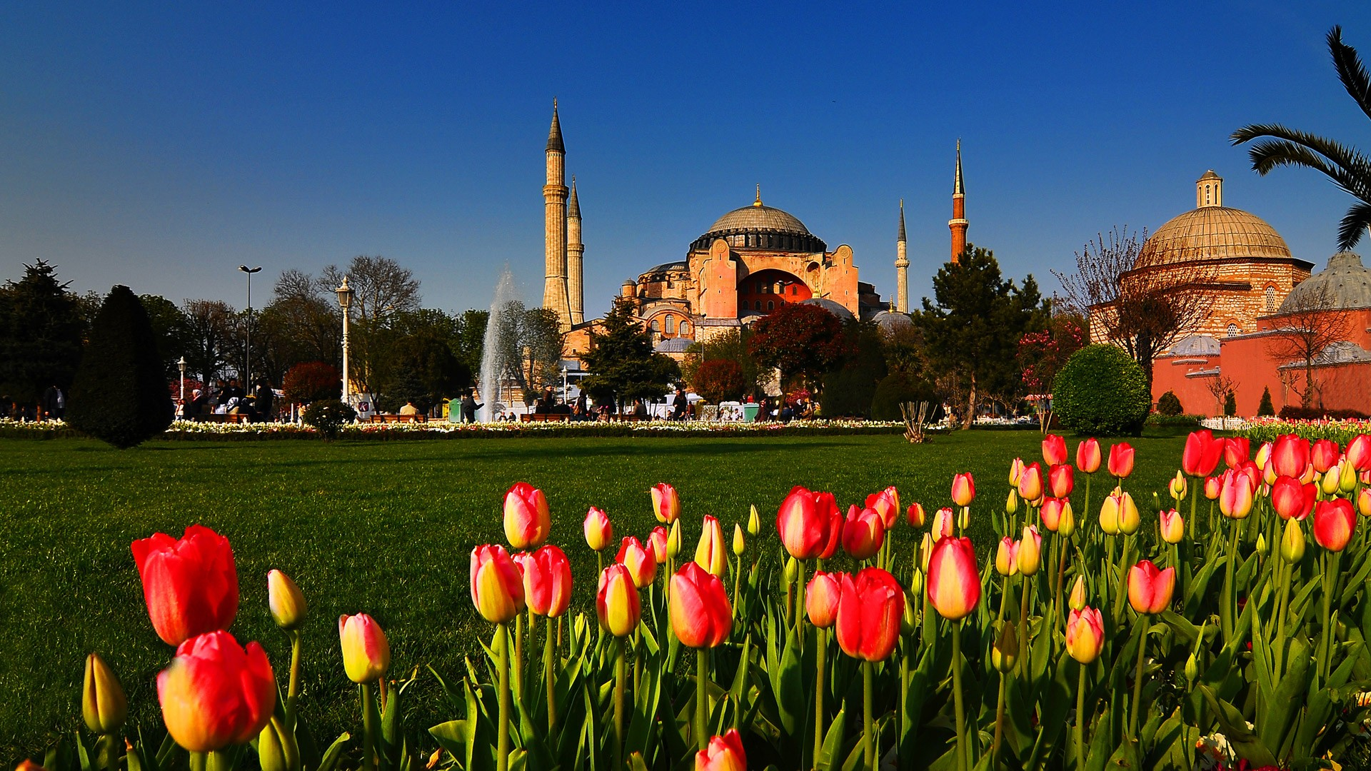 10D 7N Turkey Enchanting Tulip Tour